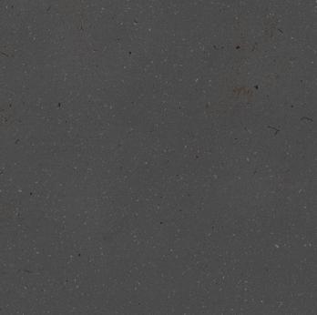 Ilustração zebra - startup