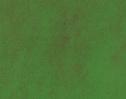 Ilustração dragão - startups