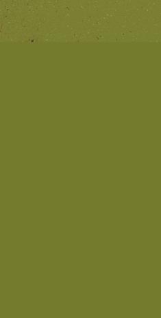 Ilustração - Zumbi
