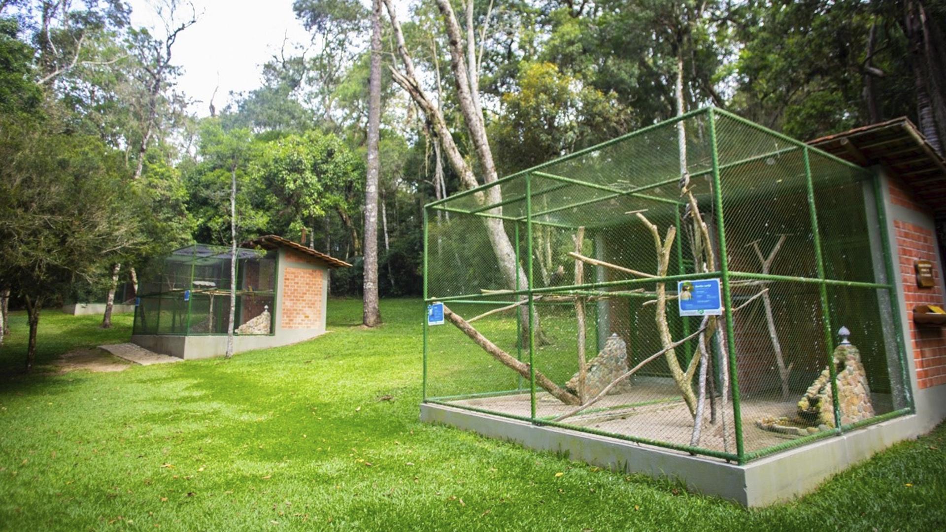 No parque, o cuidado com animais silvestres resgatados e que não têm condições de voltar ao habitat natural faz parte de uma parceria com o Instituto Águas e Terra (IAT)