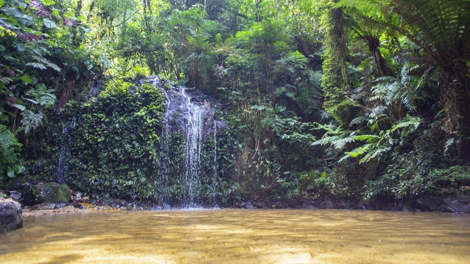 A lenda diz que quem se banhasse na cascata, casaria em breve.
