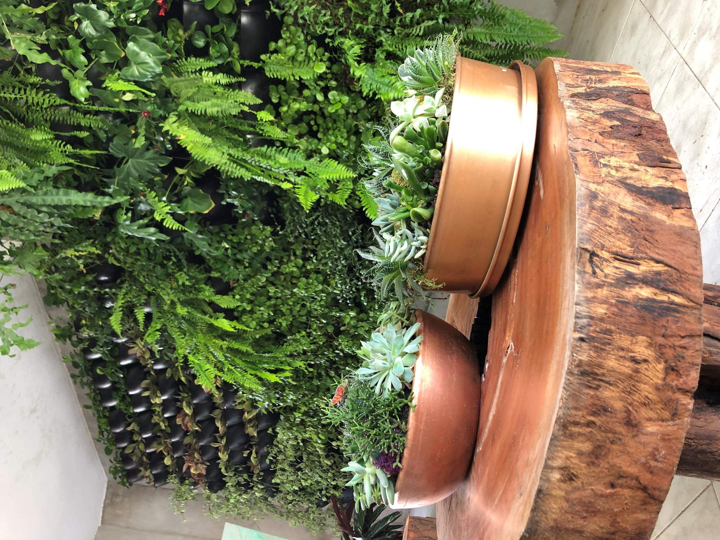 Jardins verticais são uma opção para trazer o design biofílico para dentro de casa. Na imagem, projeto da Ecotelhado. Foto: Divulgação.