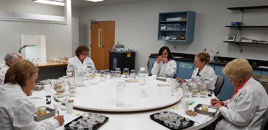 Catiê (ao centro) e o grupo de avaliadores das 18 amostras de chá. Foto: Divulgação