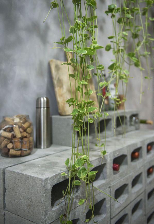 Foto do produção do Diego Paladino para matéria sobre dicas e soluções de como plantas podem transformar espaços residenciais . Plantas em ambientes externos . 23-05-2019