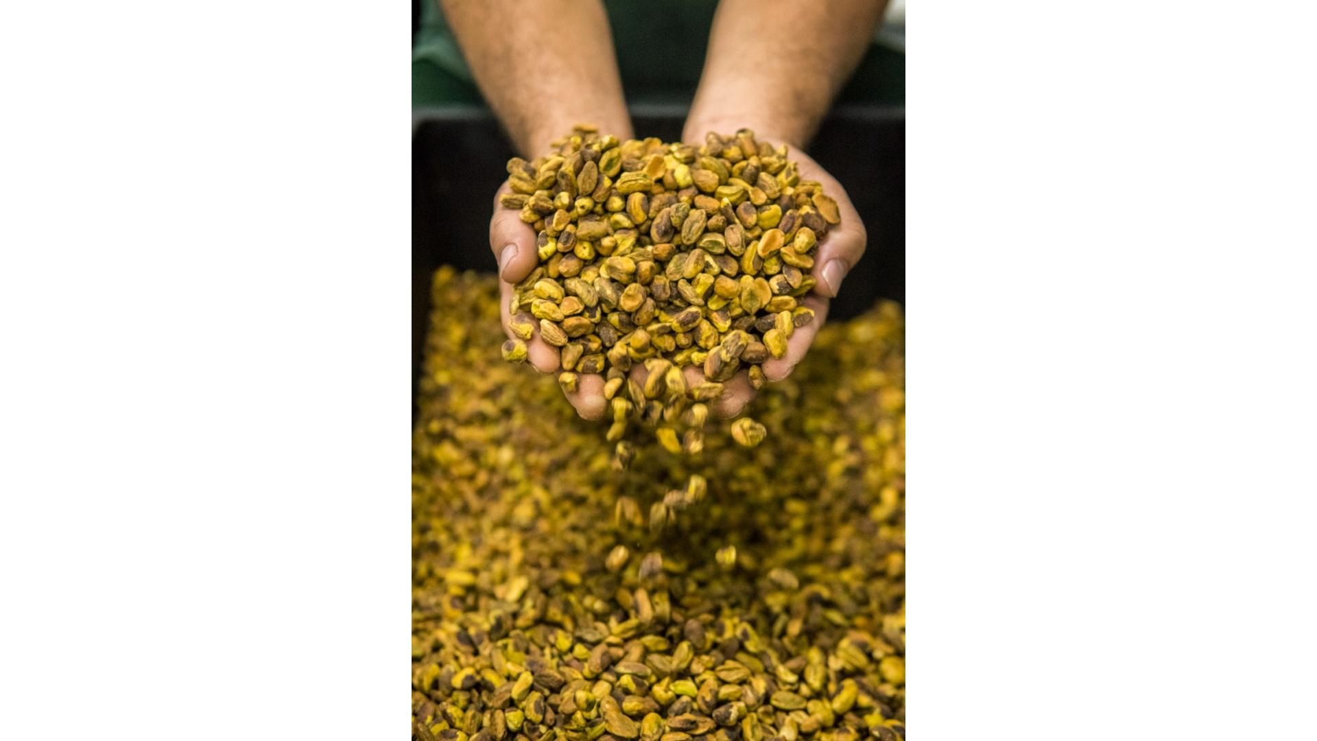 Maior parte dos ingredientes e insumos é produzida diretamente em fábrica própria.