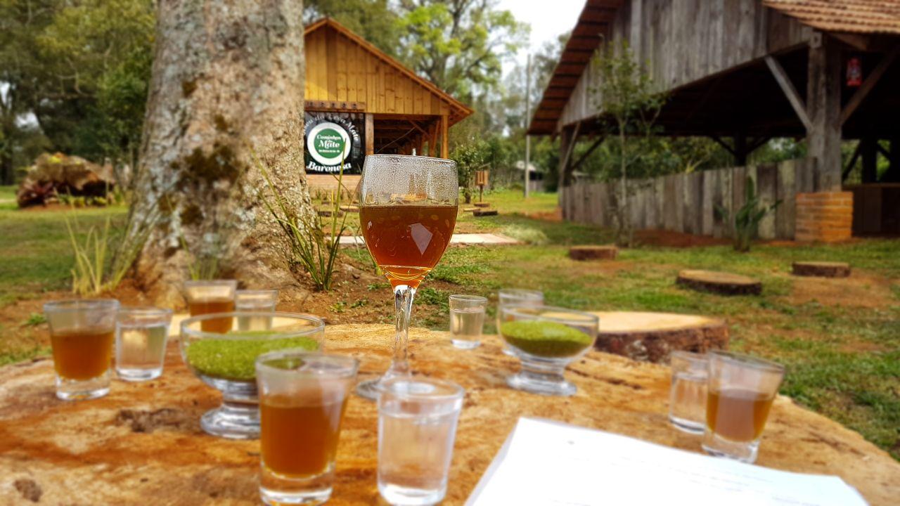 Infusão mais conhecida do público, o chá mate também ganha qualidade na segunda onda do mate com o dicionário de aromas e sabores de Catie Godoy.