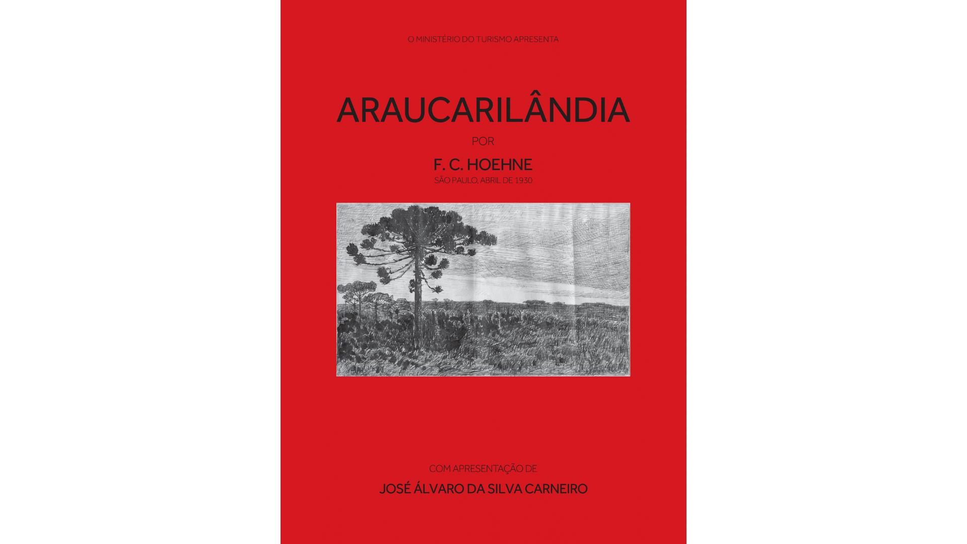 Leitura: Araucarilândia