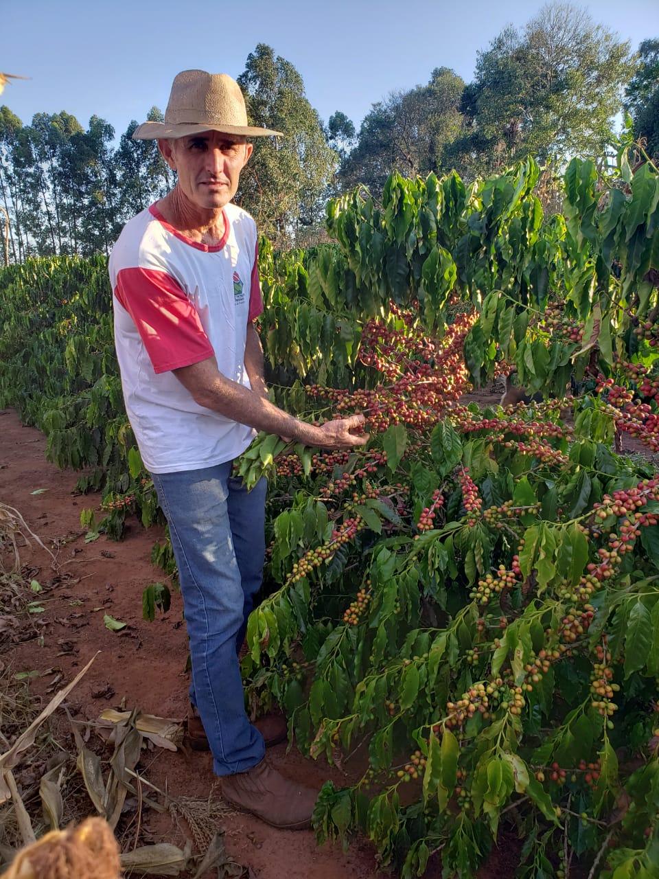 O produtor e presidente da Cocenpp, Ricardo Batista dos Santos, se prepara para a colheita de 2021. Foto: Arquivo pessoal