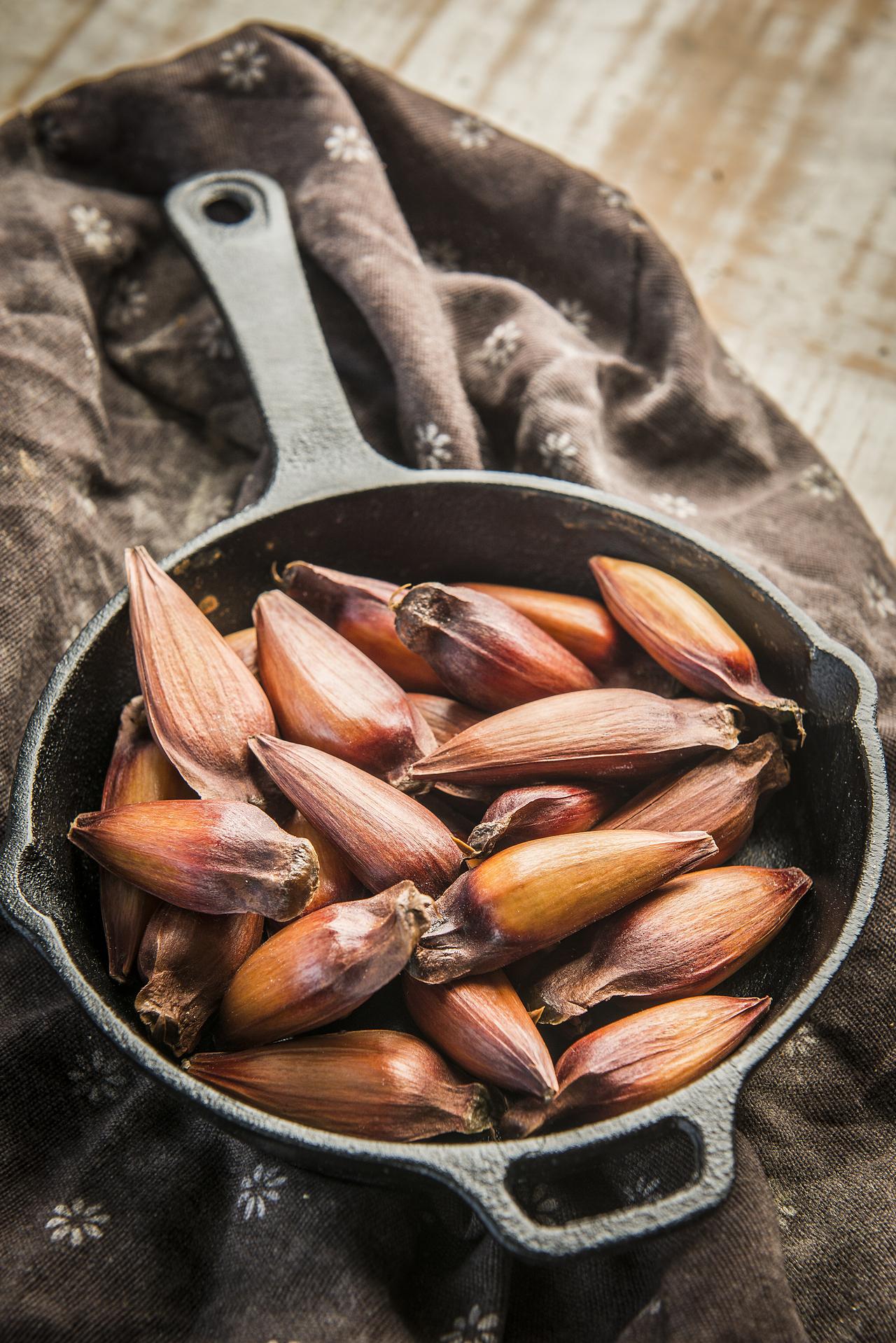 Com sabor característico, porém suave, o pinhão pode ser acrescentado a diversas receitas.