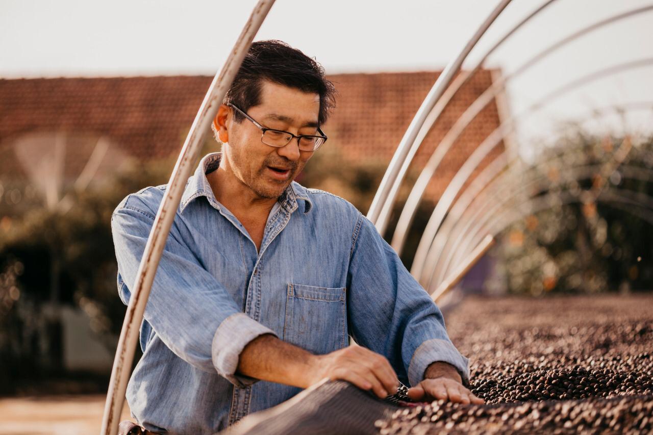 Evilásio Mori, de Cambira, voltou da cidade para o campo para produzir café especial.