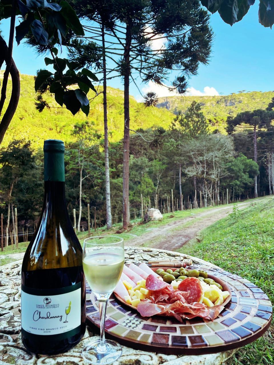 A Unos Mundos produz vinhos improváveis em São Luiz do Purunã.
