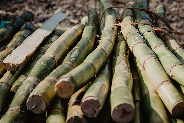 Brasil é o maior produtor mundial de cana-de-açúcar.