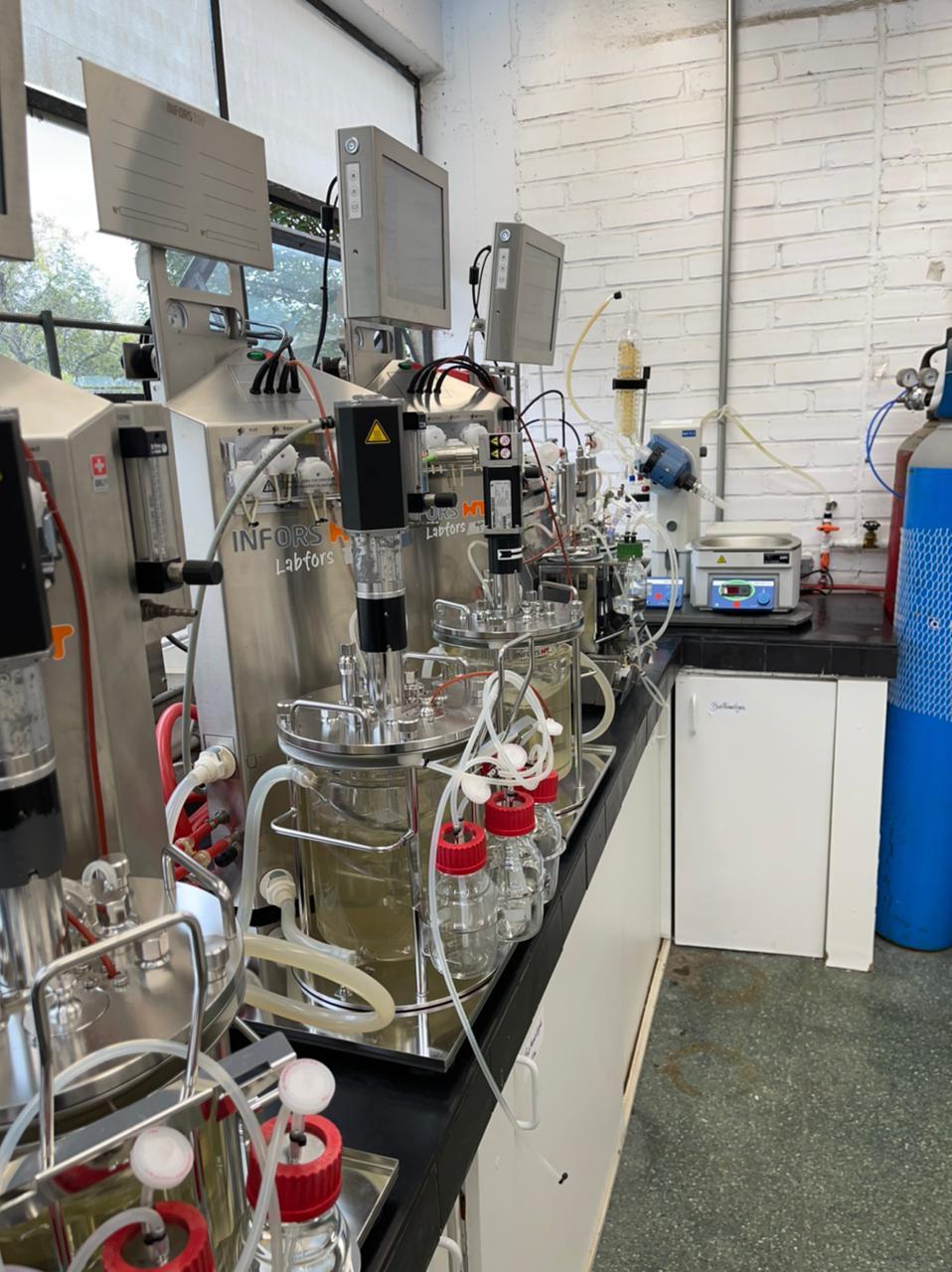 Infraestrutura de bancada da UFPR para fermentação de carboidratos a ácido lático.