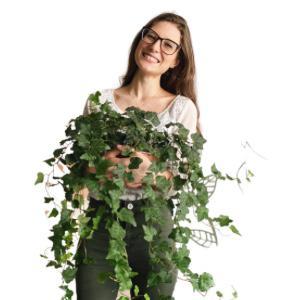 Vida Botânica