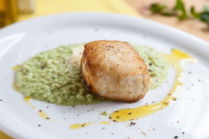 Peixe grego e risoto de capim-limão. Foto: Fernando Zequinão/Gazeta do Povo