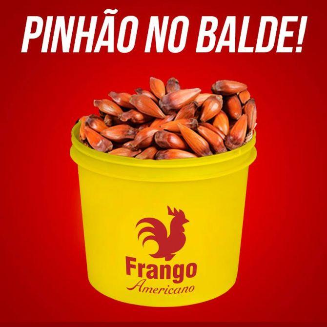 Pinhão no balde. Foto: reprodução/Facebook.