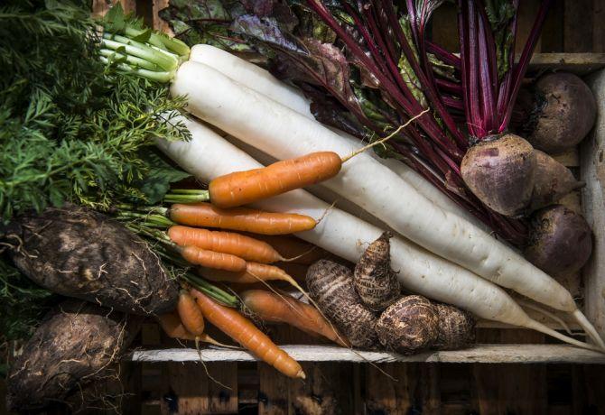 Variedade de frutas, legumes e hortaliças varia conforme a estação do ano. Foto: Letícia Akemi/Gazeta do Povo