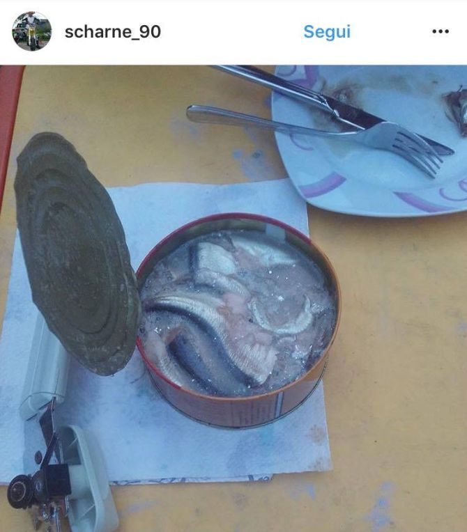 Do bacon de baleia à crista de galo: uma viagem pelo mundo por meio de comidas inusitadas