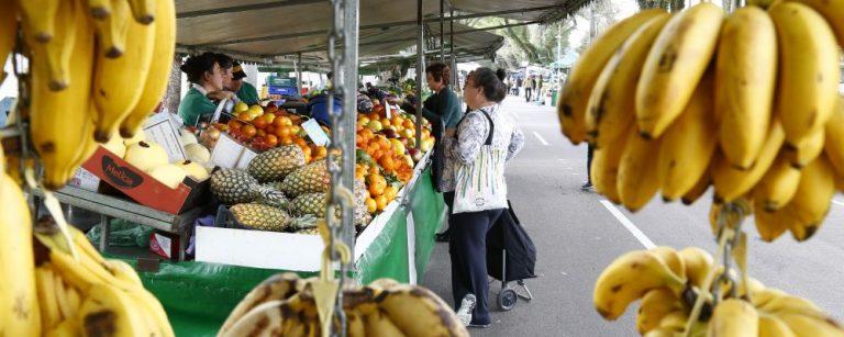 Feira livre em Curitiba. Foto: Aniele Nascimento/Gazeta do Povo