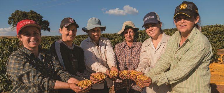 Mulheres assumem lavoura e fazem crescer produção de café especial no Paraná