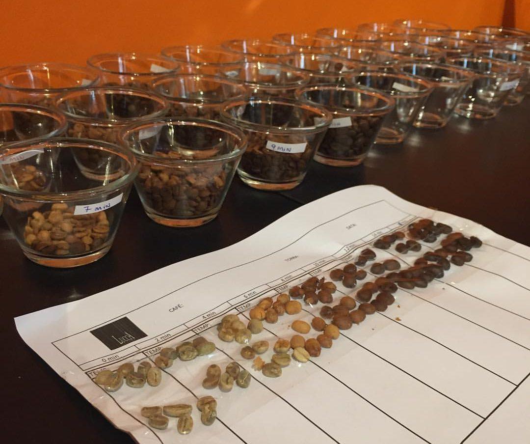 Quem participar do curso do Lucca vai aprender a diferenciar as variedades de cafés especiais. Foto: divulgação