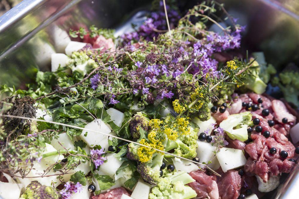 Cordeiro decorado com vegetais e ervas recém colhidas, pronto para cozinhar em um forno geotermal comunitário em Reykholt, na Islância. Foto: Bara Kristinsdottir/The New York Times.