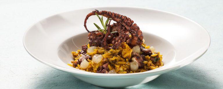 Fotos de pratos preparados com as proteina Polvo e Ostra para a revista Bom Gourmet de Janeiro de 20145.