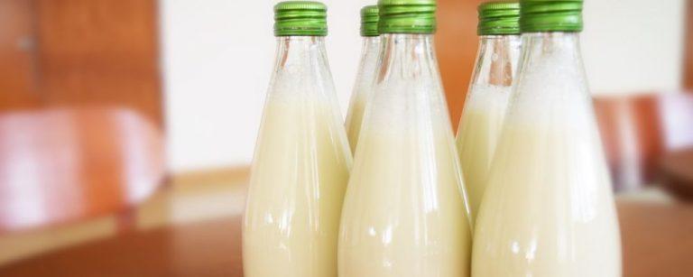 Como fazer 3 leites vegetais em casa: de inhame, castanha de caju e aveia