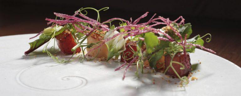 Vieiras, melancia e pó de cogumelos lactárius. Foto: Divulgação