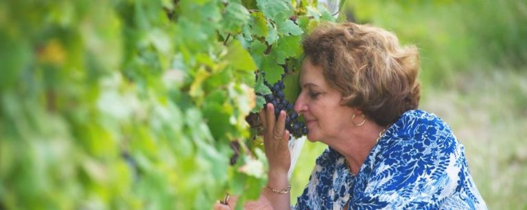 Cinco mulheres querem fazer os melhores vinhos do Brasil