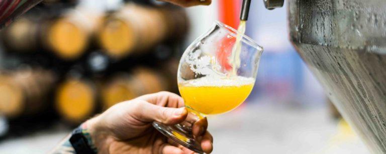novos cervejeiros. foto: unsplash.