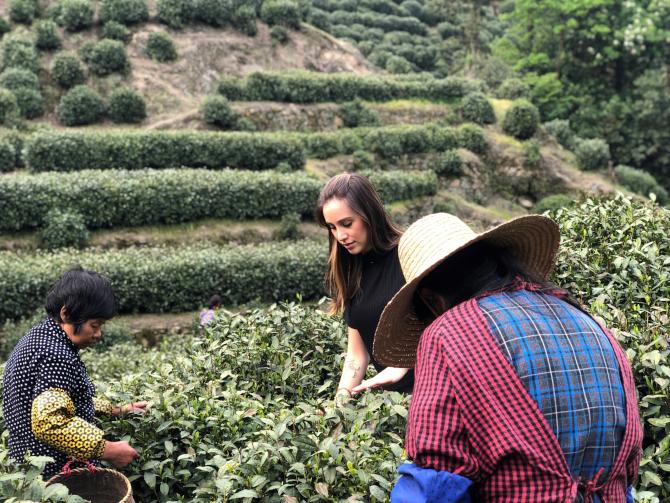 Sommelier de chás Ana Carolina Delai em busca de novidades sobre  os chás. Foto: Ana Carolina Delai / Acervo