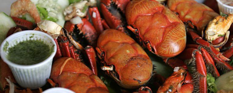 FESTIVAL CARANGUEJO - PONTAL PARANA - 21-01-2012 - VERAO :  9 festival do caranguejo em Pontal do Parana litoral do Parana durante verao 2012 . Foto : Marco Andre Lima/Agencia de Noticias Gazeta do Povo