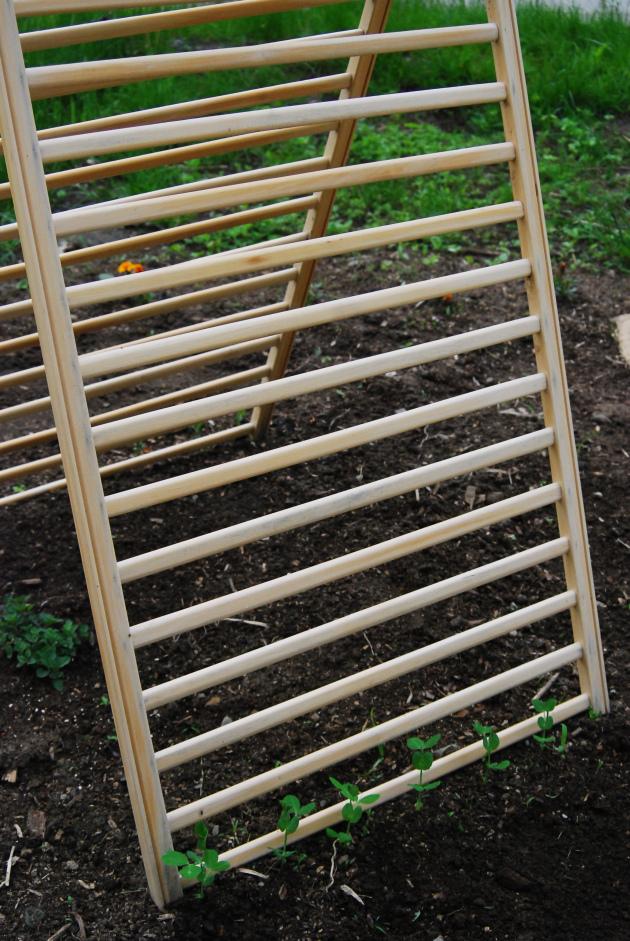 10 - As laterais unidas podem ser treliças no jardim.