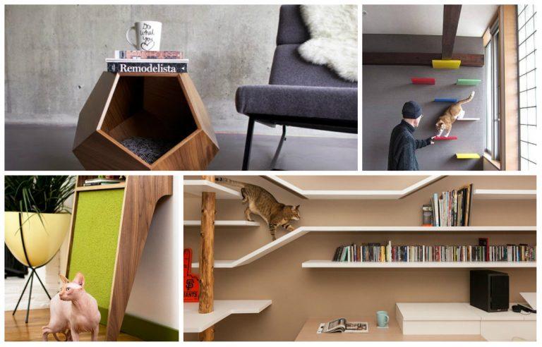 Além de deixarem seu bichinho confortável, esses móveis e objetos também deixam a casa mais bonita. Fotos: créditos no texto