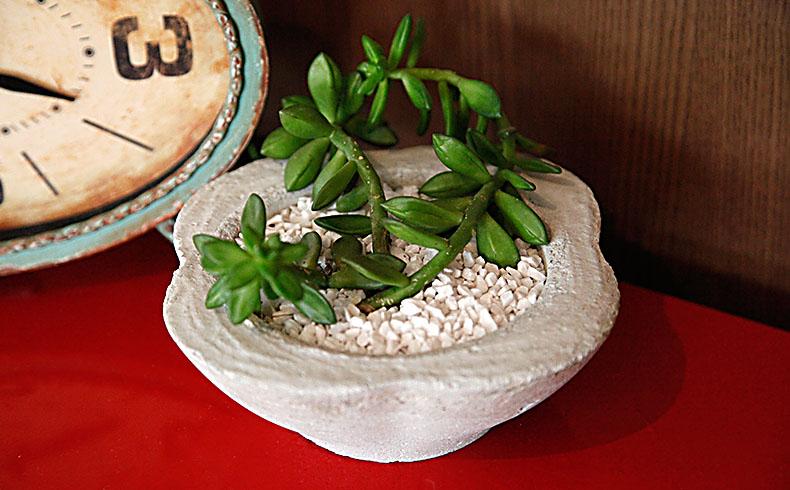 Como fazer um vaso de cimento para decorar a casa?