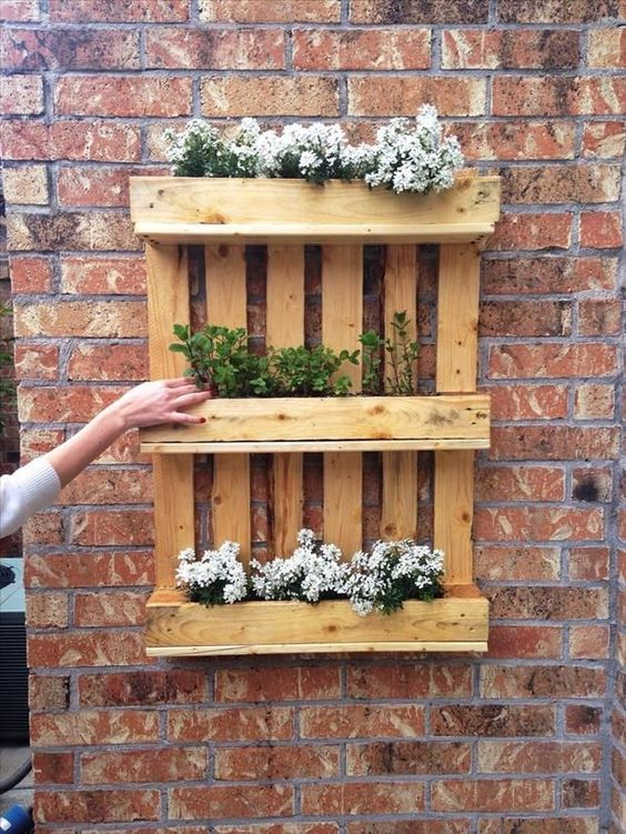 Um jardim vertical para dar o charme que faltava no quintal de casa. Foto: Pinterest