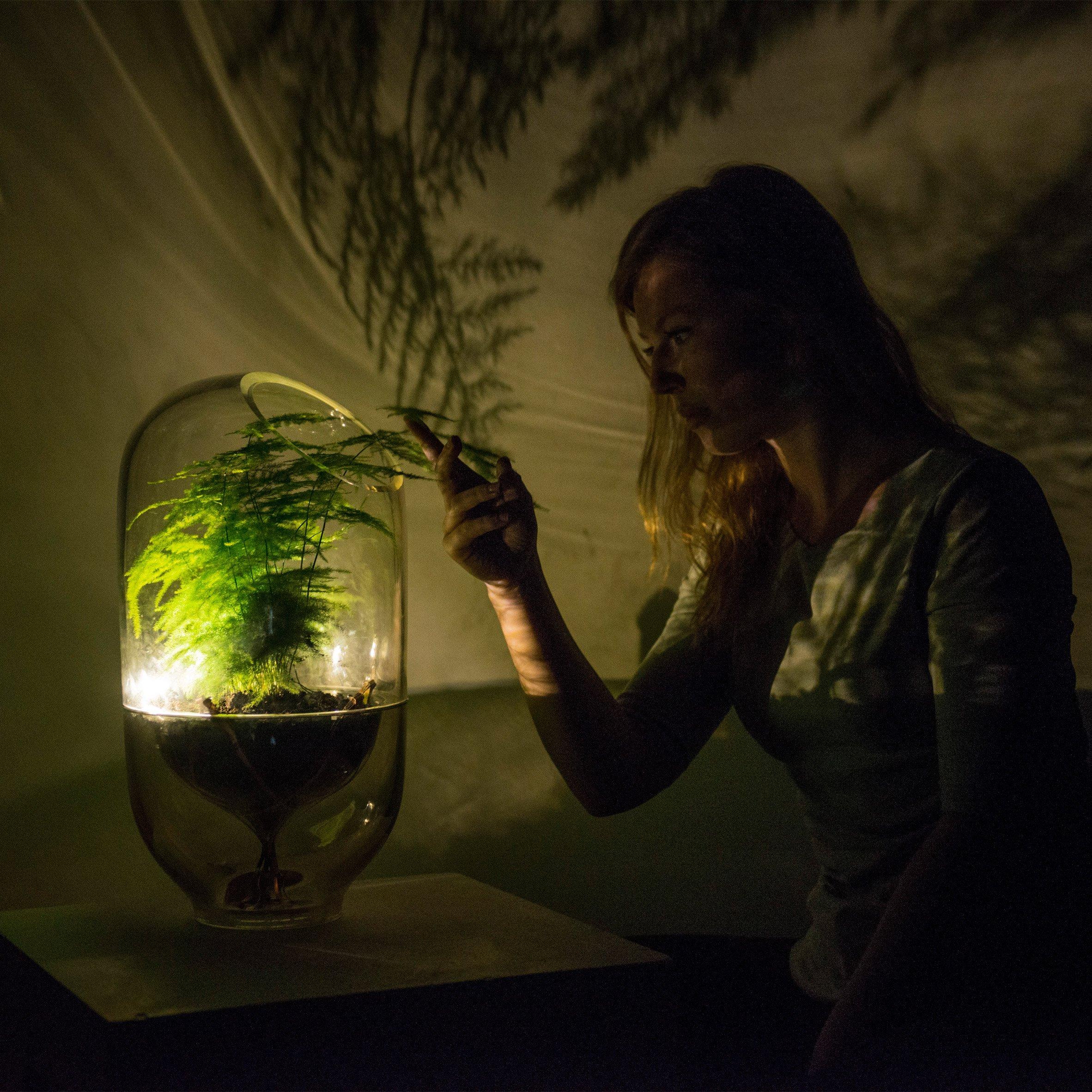 Luminária da designer holandesa Ermi van Oers gera luz pela fotossíntese. Foto: Divulgação/Living Light