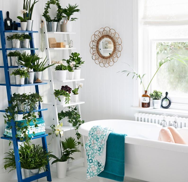 Coloque a planta em um lugar que não seja de passagem. Foto: Reproduçâo/Ikea
