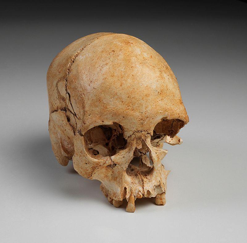 Esqueleto mais antigo descoberto nas Américas, popularmente conhecido como Luzia e uma das peças perdidas durante o incêndio. Foto: Museu Nacional