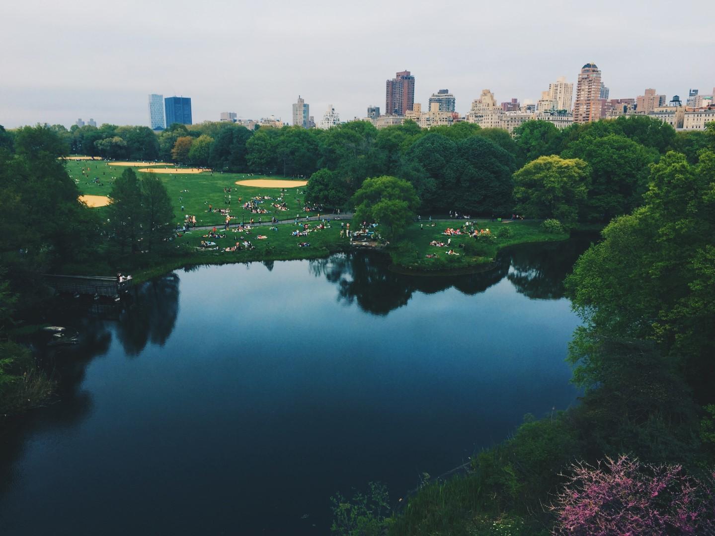 Cidades precisam investir em infraestrutura verde para garantir uma vida com mais qualidade para os habitantes. Foto: Becky Phan / Unsplash