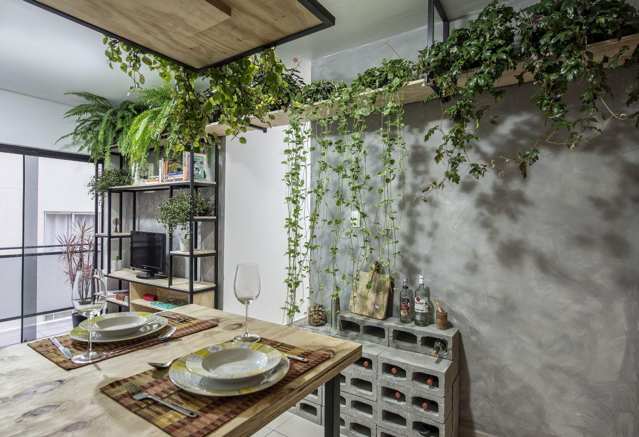 Ambientes pequenos não são desculpa para falta de plantas: basta saber como aproveitar o espaço para encaixá-las. Nesse caso, prateleiras altas são uma ótima pedida. Foto: Letícia Akemi/Gazeta do Povo