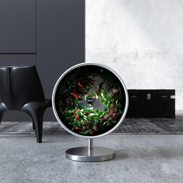 Horta hidropônica portátil é capaz de produzir alimentos dentro do apartamento. Foto: Divulgação