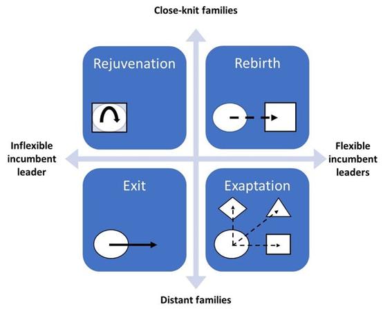 <em>Quatro estratégias de transição para empresas familiares (cálculos dos autores)</em>