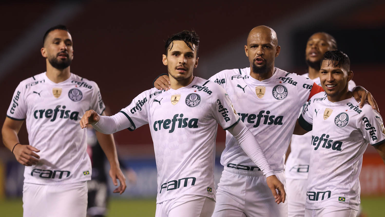 Guia do Brasileirão - Palmeiras