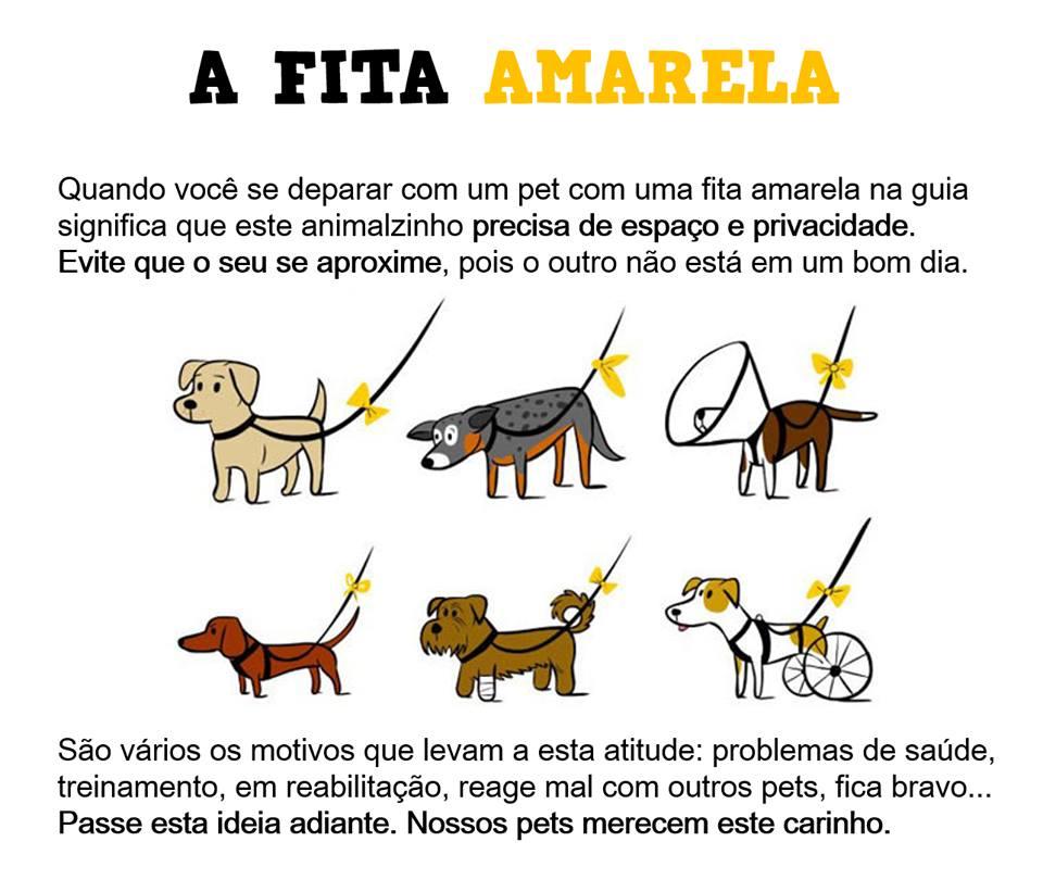 A campanha da Fita Amarela promove o respeito ao espaço do cãozinho.