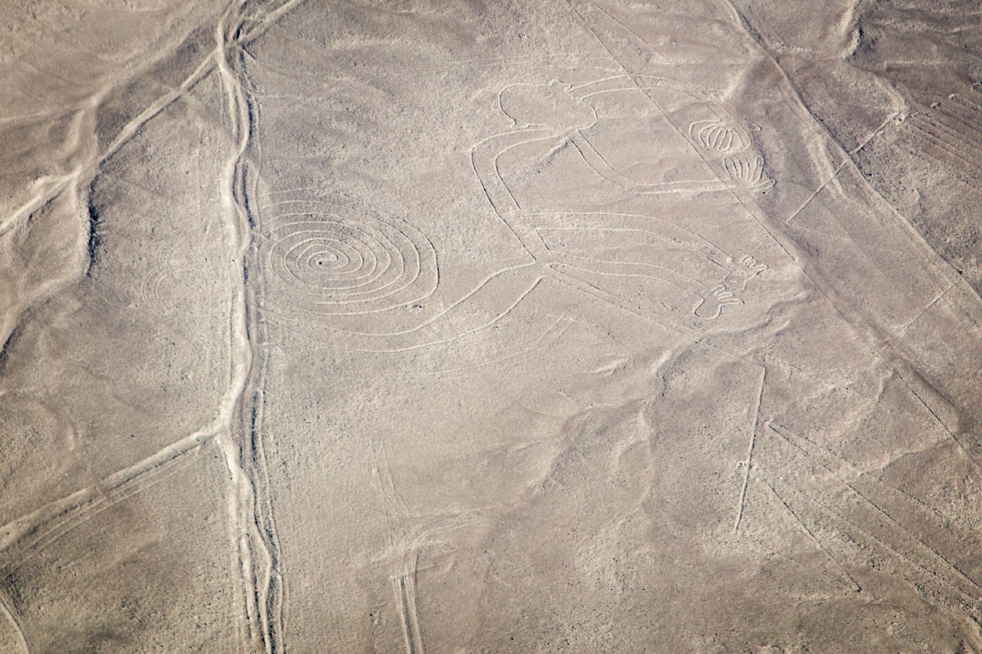 Os passageiros podem contemplar a atração mais misteriosa do Peru: as Linhas de Nazca - um conjunto de geoglifos designados, desde 1994, como Patrimônio Mundial da UNESCO.Foto: Bigstock