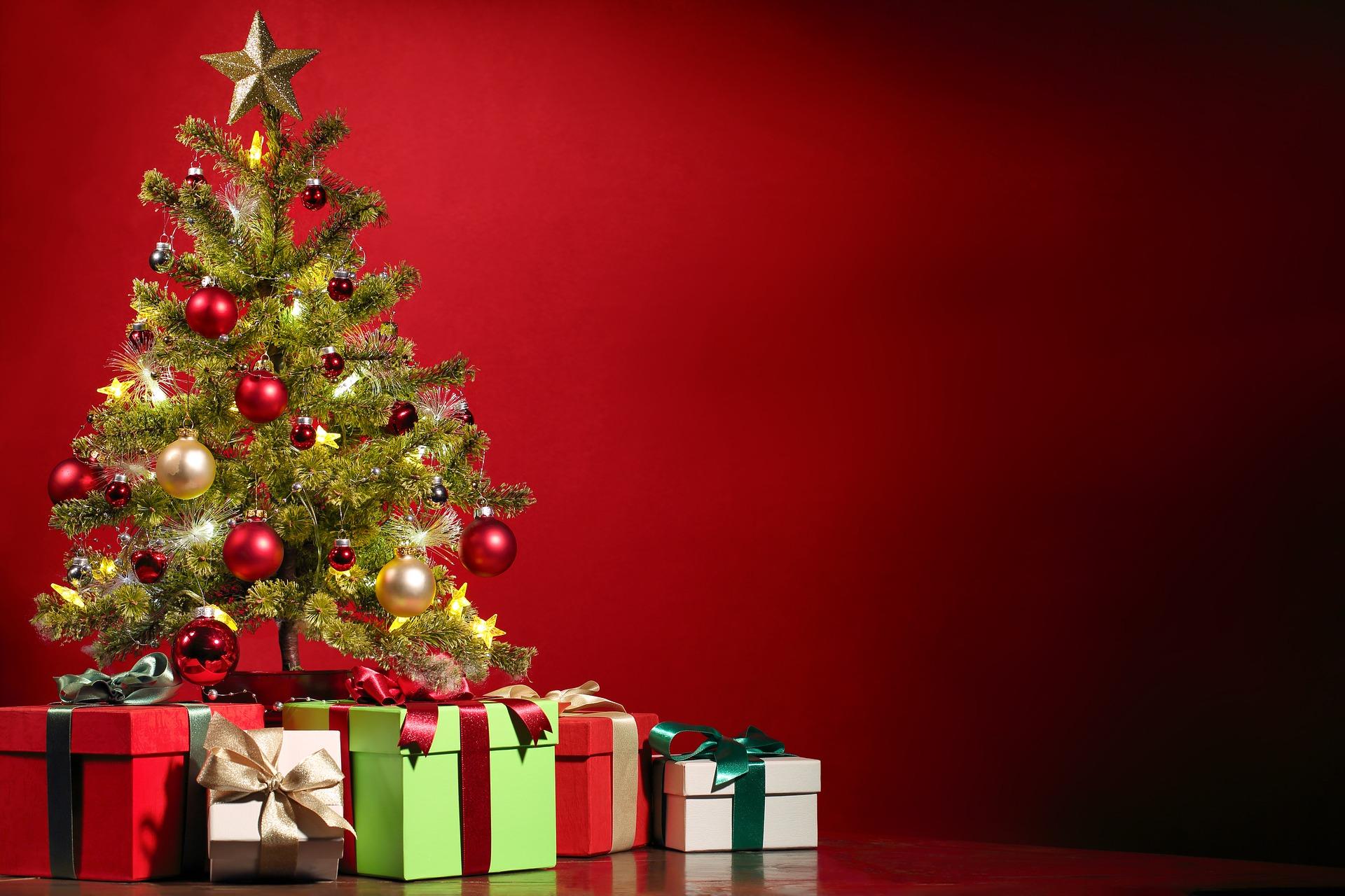 As primeiras árvores de Natal chegaram no Brasil por causa da realeza imperial. Foto: Pixabay.