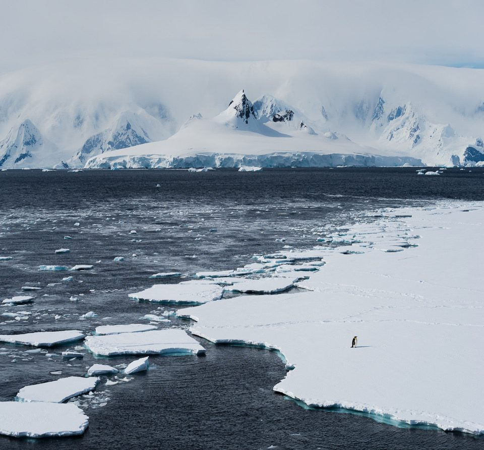 As paisagens antárticas são de tirar o fôlego. Foto: Divulgação