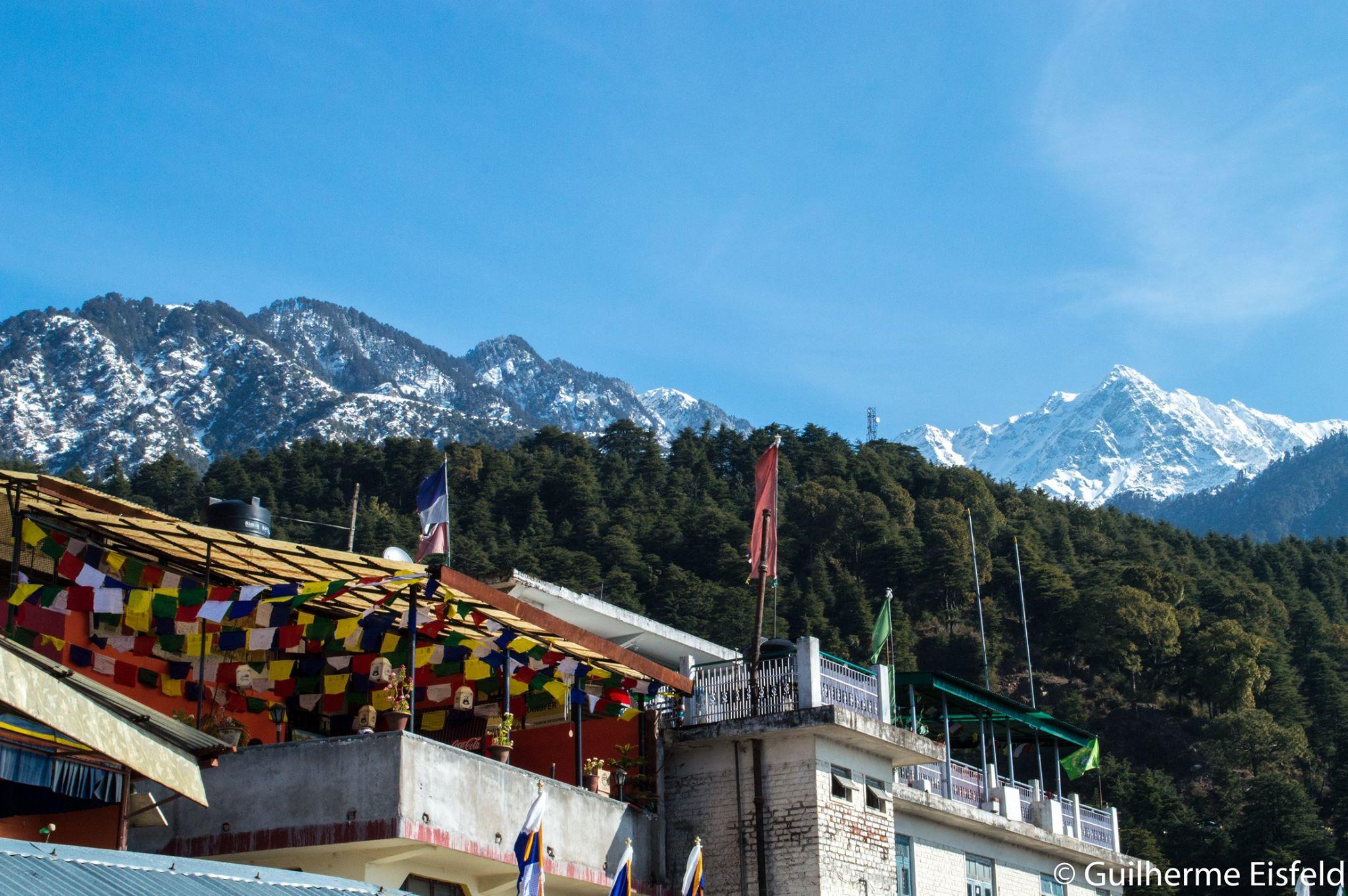 Guilherme também foi até a terra do Dalai Lama, Mcleod Ganj, um subúrbio de Dharamsala, na Índia. Foto: acervo pessoal.